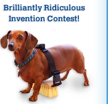 Home - Totally Absurd Inventions & Patents, America's ...  Ridiculous Patents